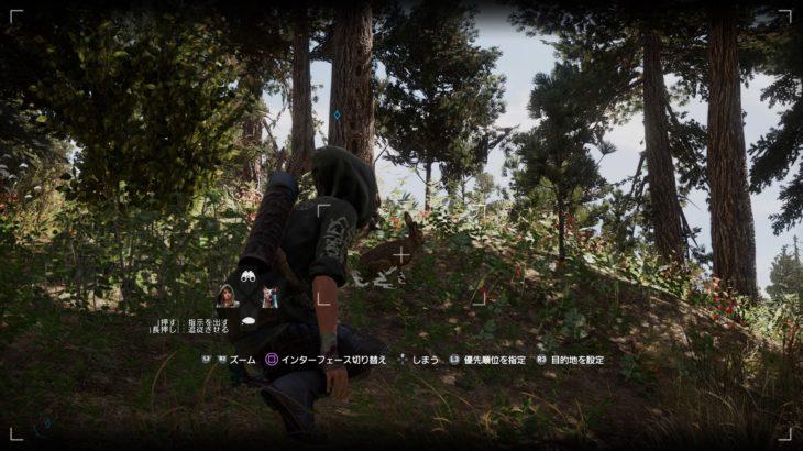 【FarCry5】ファークライ5「野ウサギ」狩りのポイント